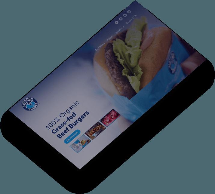 elevation burger web design